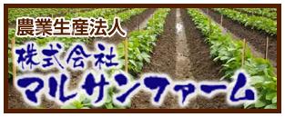 農業生産法人株式会社マルサンファーム